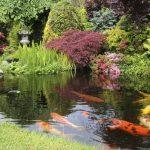 21 Japanese Style Garden Design Ideas
